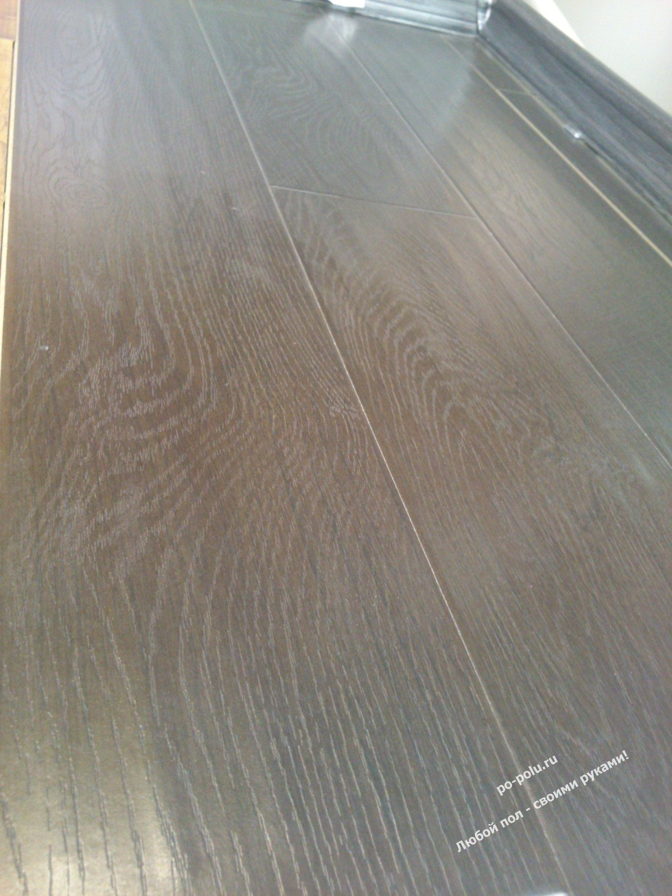 Vinyl flooring cost 100 carpet vs laminate cost solid for Hardwood floors dog nails